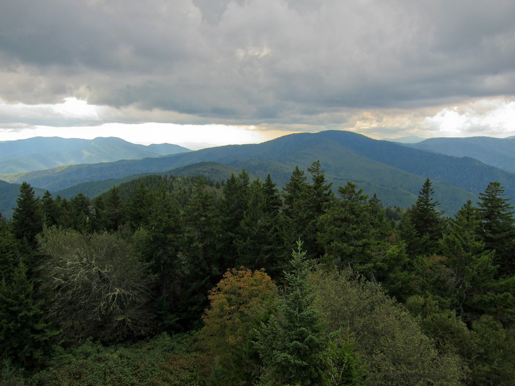 View from Mount Sterling in Great Smoky by MiguelVieira, on Flickr