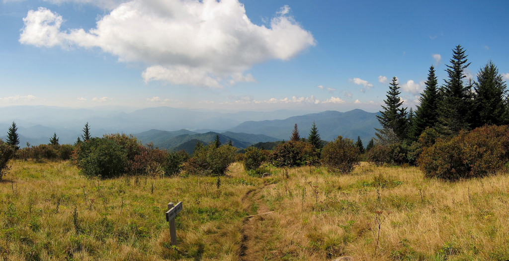 View from Andrews Bald on Forney Ridge T by MiguelVieira, on Flickr