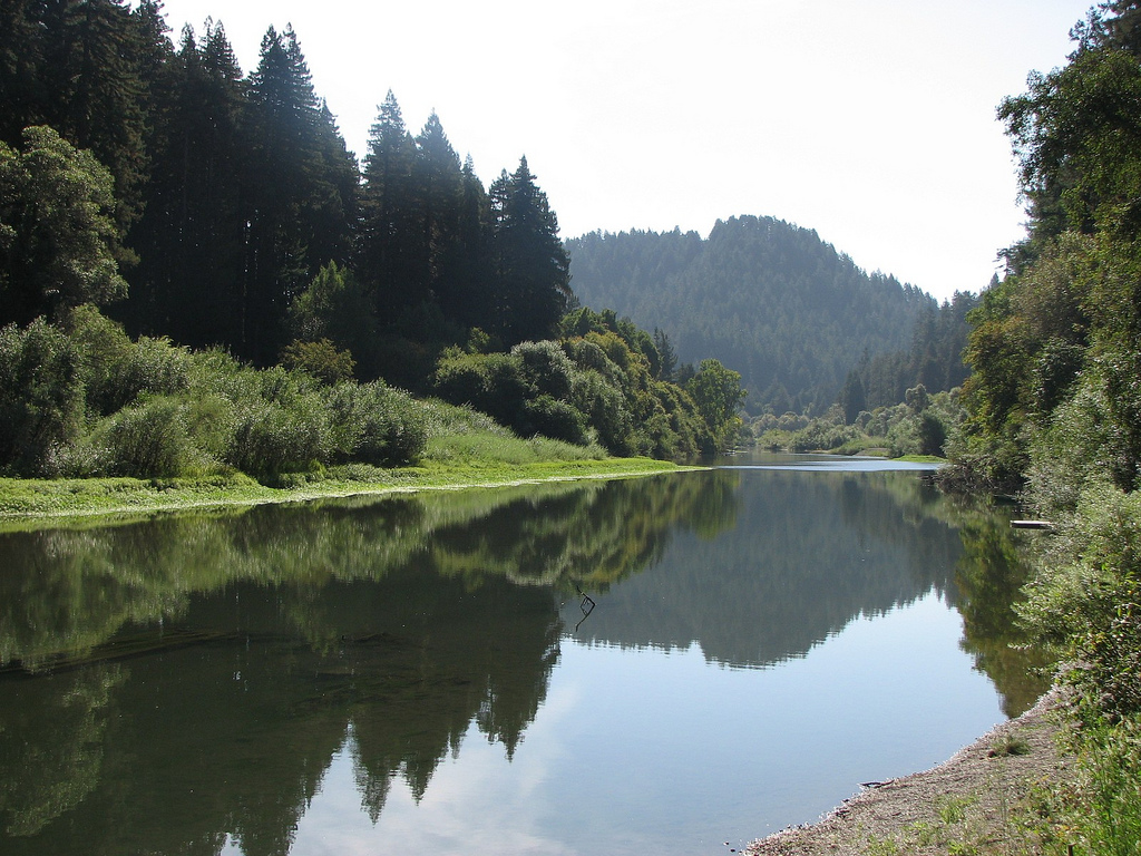 Russian River (Monte Rio) in the morning by hortulus, on Flickr