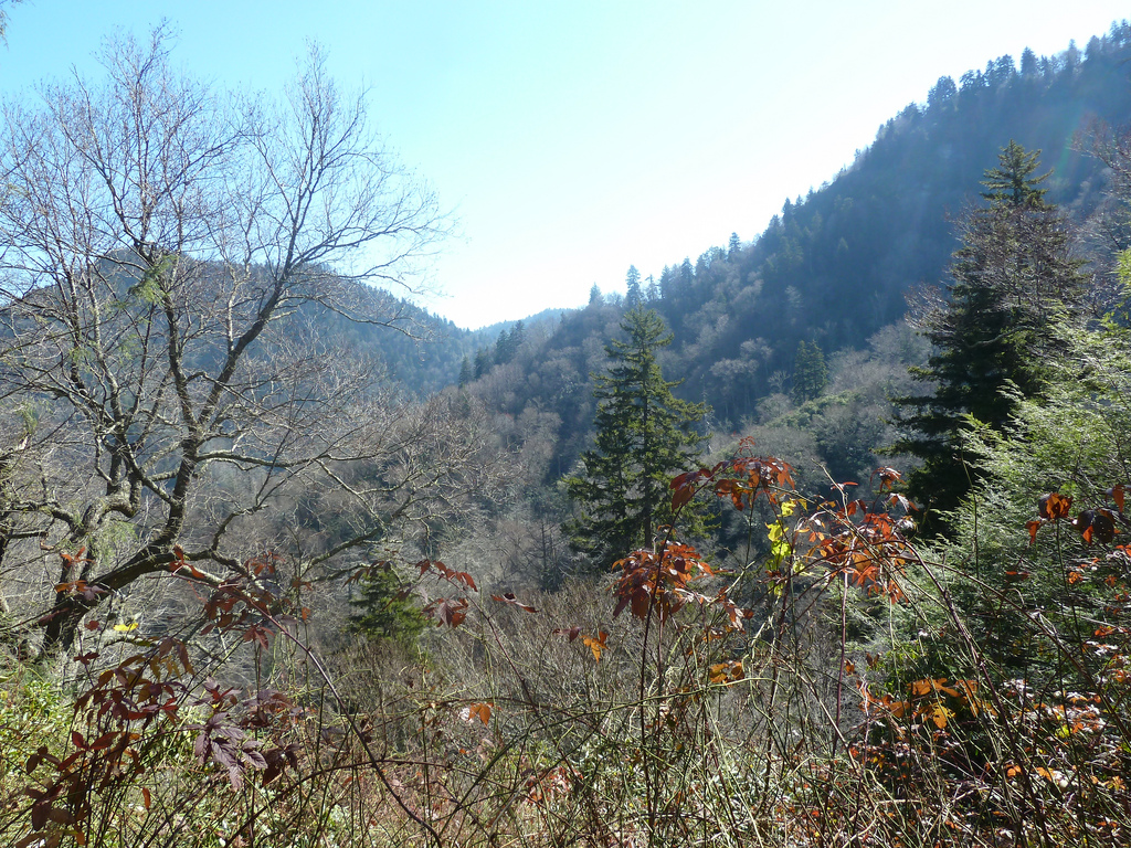 Chimney Tops, Great Smoky Mountains Nati by Fuzzy Gerdes, on Flickr