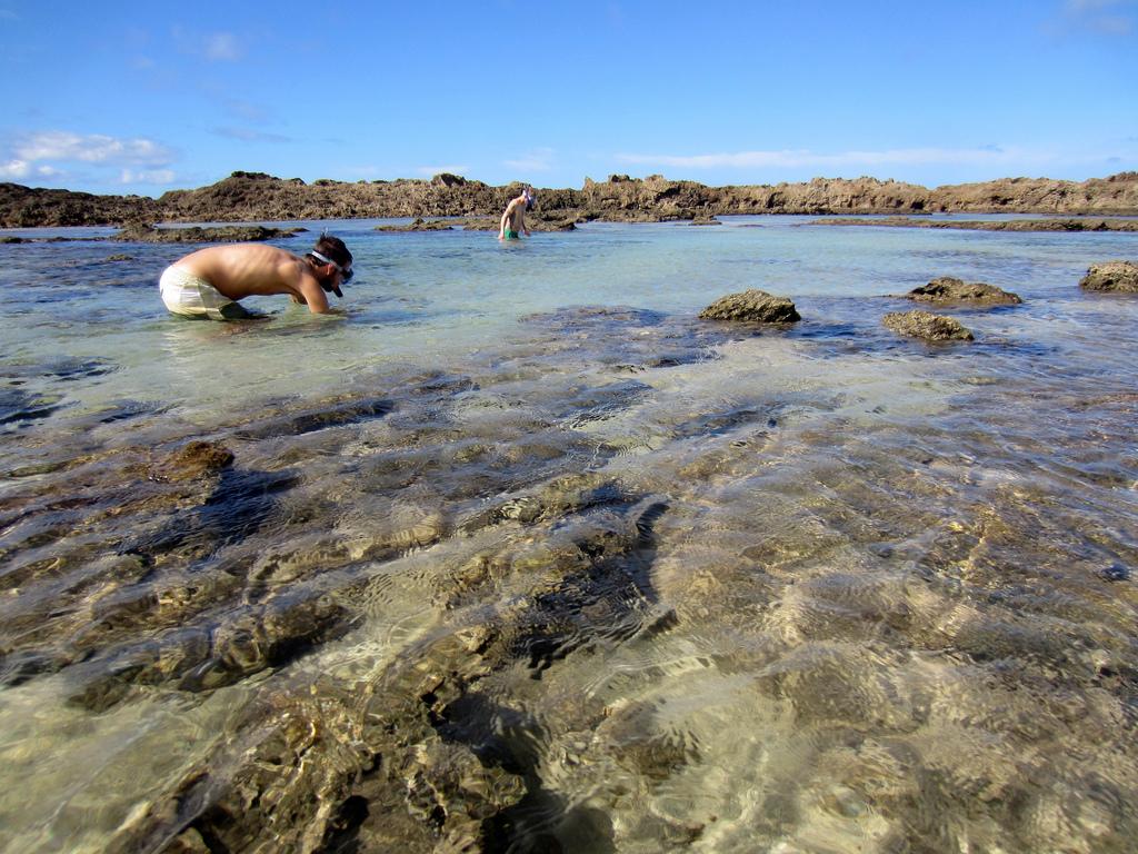 Hawaii / North Shore: Snorkeling at Shar by eliduke, on Flickr