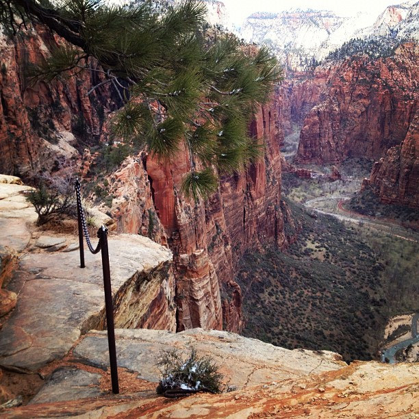 Do I have to walk over this? West Rim tr by Kelly DeLay, on Flickr