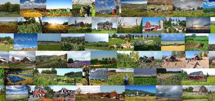 70 Impressive Stretches of Farmland – Infinite World Wonders