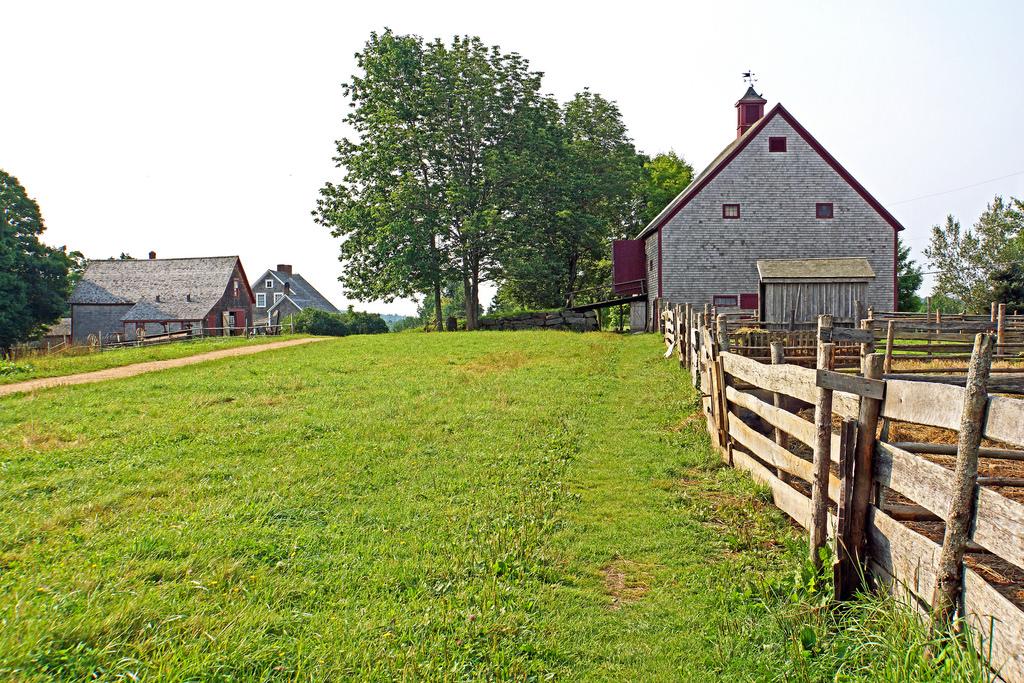 DSC01426 - Ross Farm by archer10 (Dennis) 98M Views, on Flickr