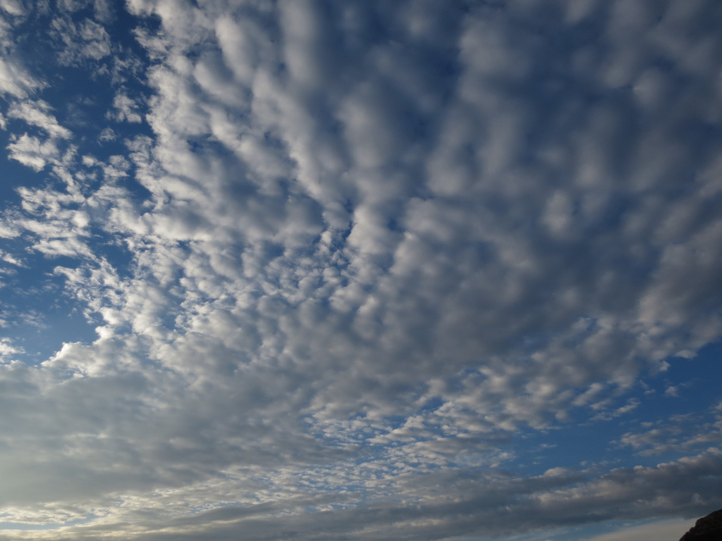Cirrocumulus Clouds by alana sise, on Flickr