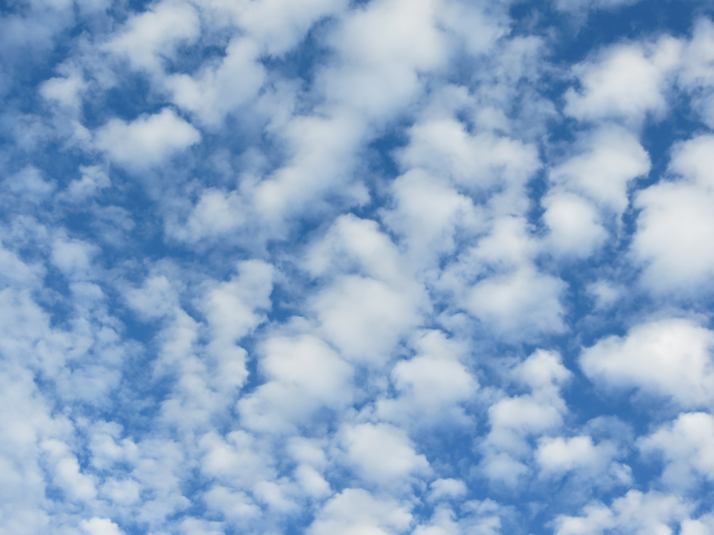 Altocumulus Clouds by alana sise, on Flickr