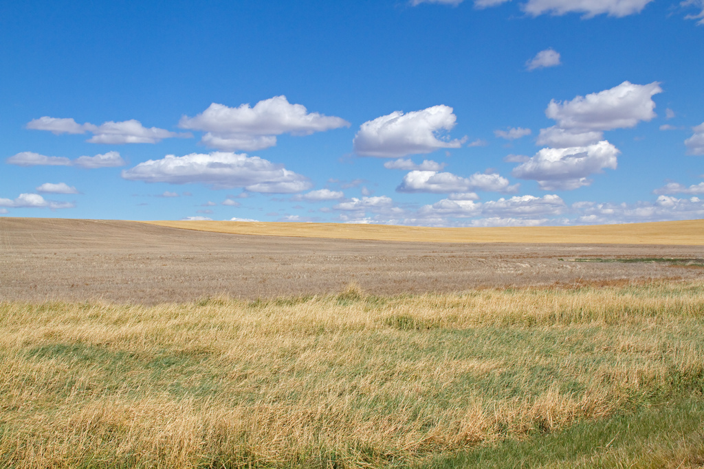 Open Plains by ahisgett, on Flickr
