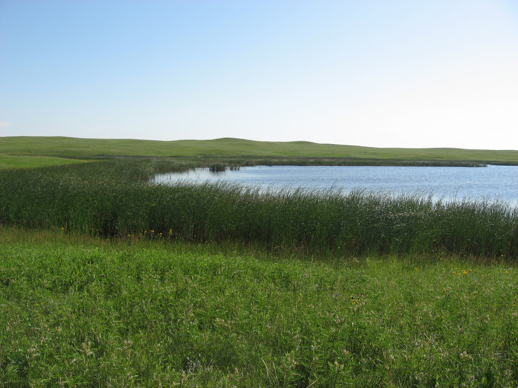 Wetlands and grasslands by Plains and Prairie Potholes Landscape Conservation, on Flickr