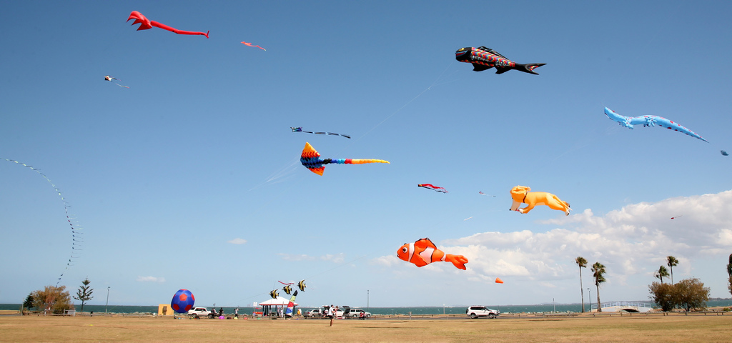 redcliffe kites 10-09 by bertknot, on Flickr