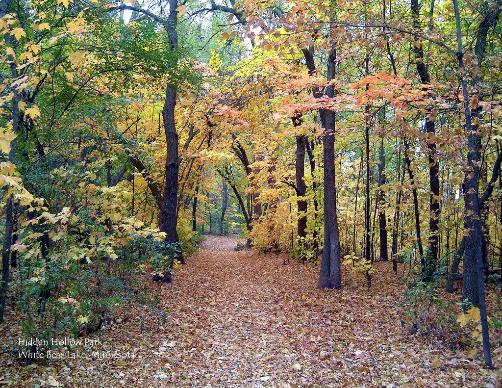 10 October - Hidden Hollow Park, White B by scostello22, on Flickr