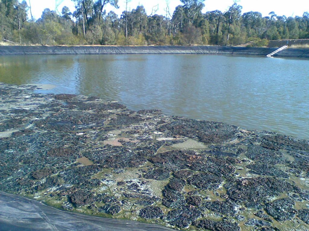 CSG waste water pond, Pilliga Forest, Ju by lockthegate, on Flickr