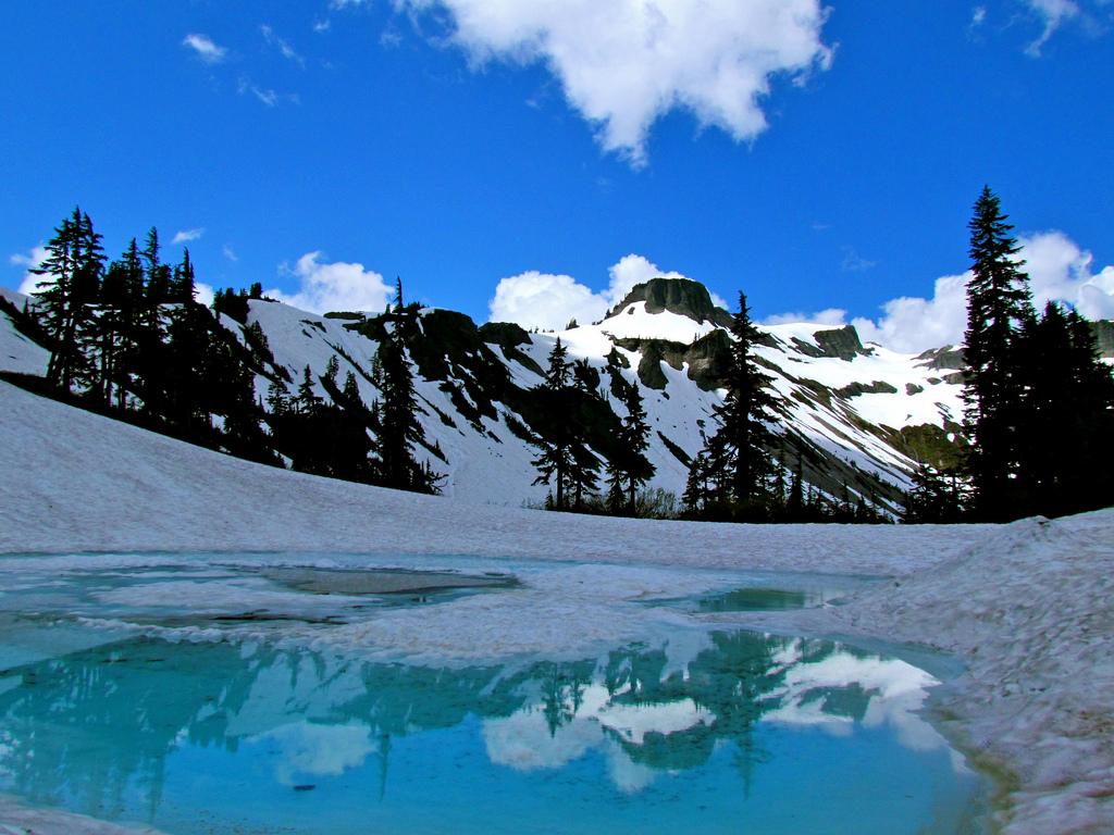 Mt. Baker-Snoqualmie National Forest by jeffgunn, on Flickr
