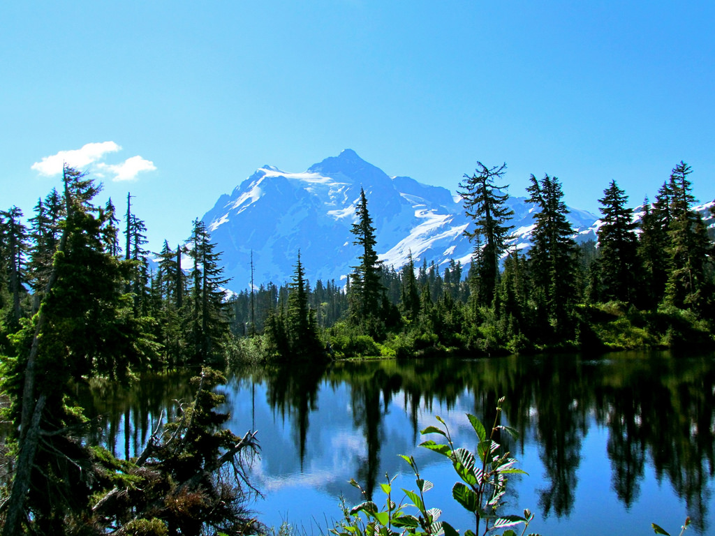 Mt. Baker-Snoqualmie National Forest by jeffgunn, on Flickr