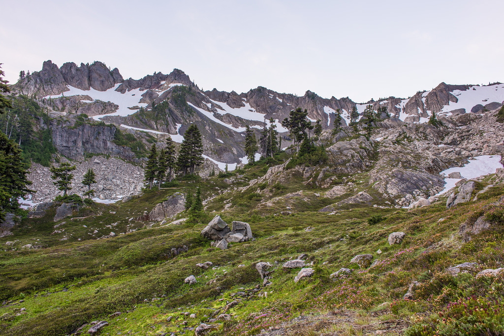 Valley of Heaven, Olympic National Park, by nick.mealey, on Flickr