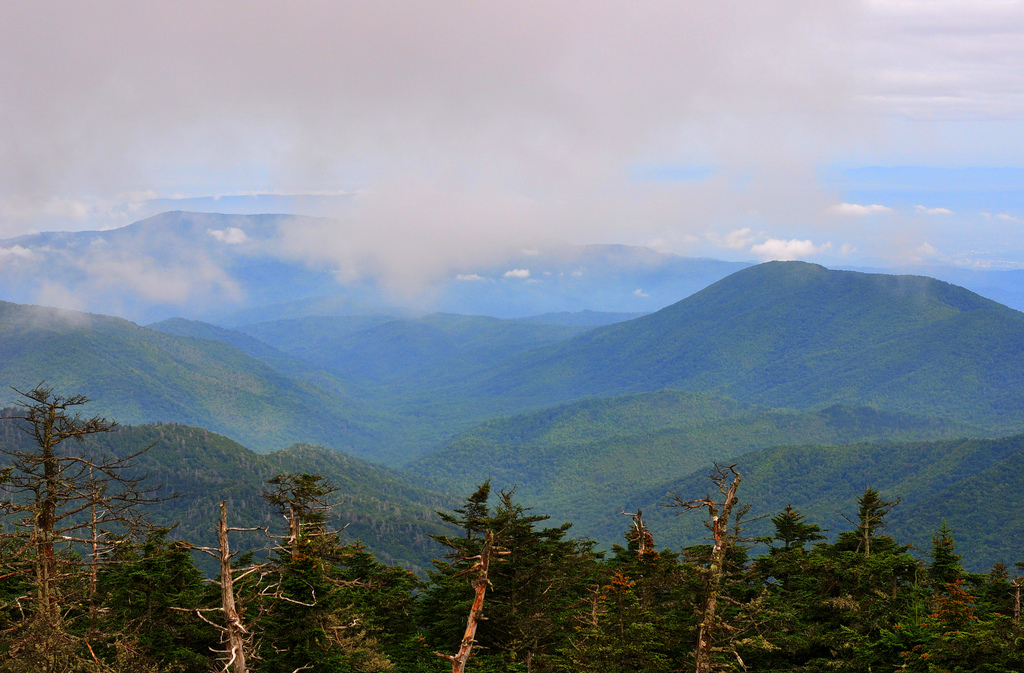 Great Smoky Mountains by miketnorton, on Flickr