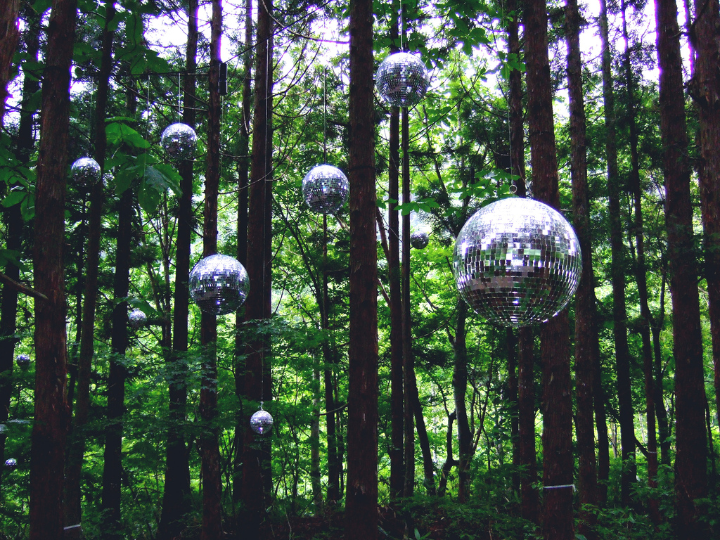 Forest Disco by Chalky Lives, on Flickr