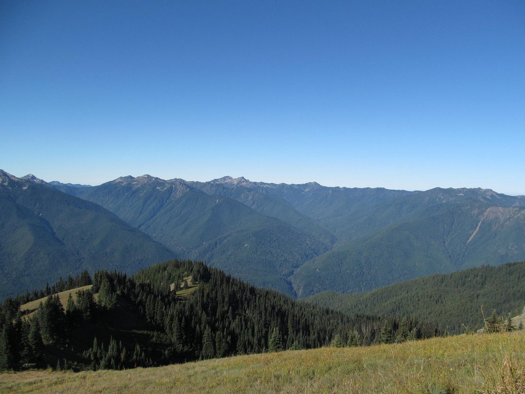 Hurricane Ridge - Olympic National Park by Dougtone, on Flickr