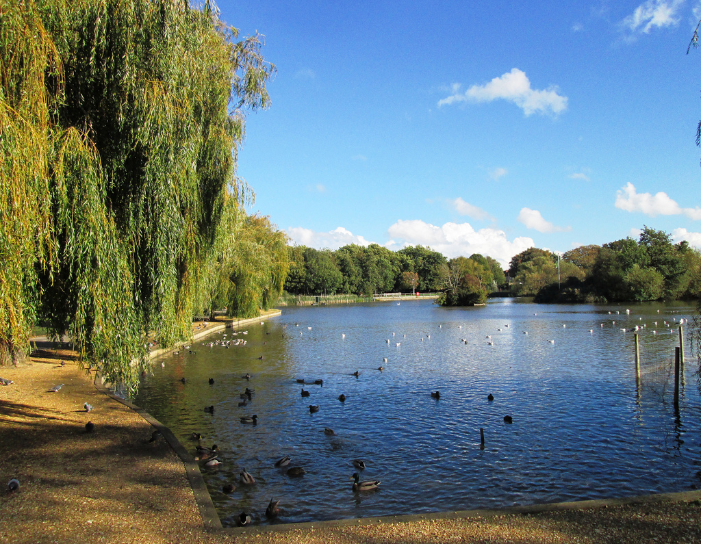 Baffins Pond, Portsmouth 1 by Leimenide, on Flickr