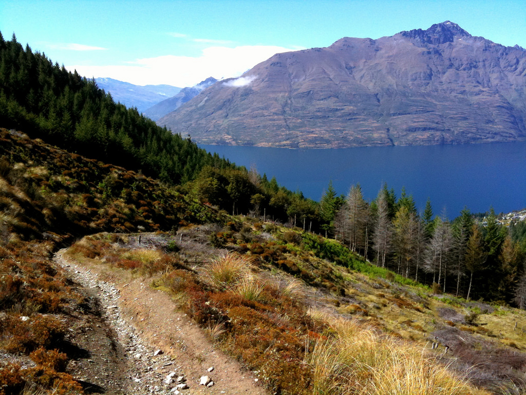 Mountain Bike The Ben Lomond Track, Quee by TRAILSOURCE.COM, on Flickr