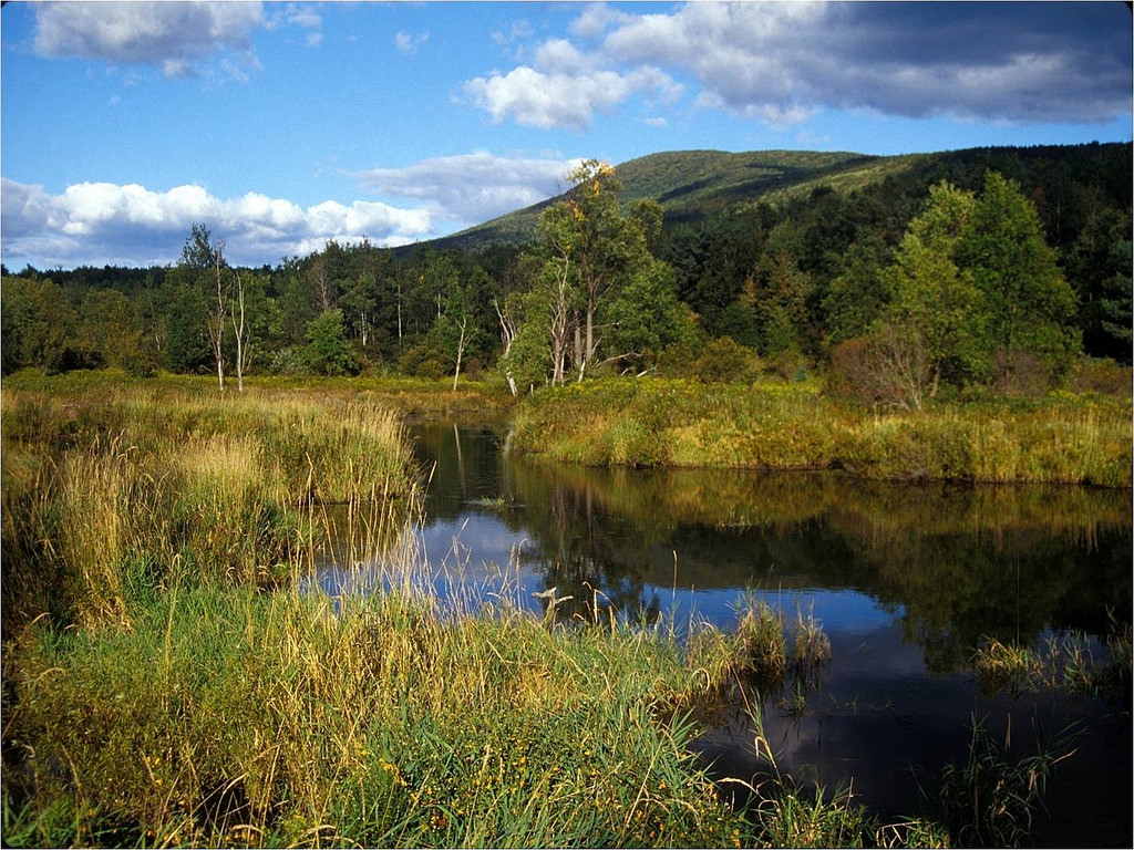 Catskills Mountains and freshwater marsh by U. S. Fish and Wildlife Service - Northeast Region, on Flickr