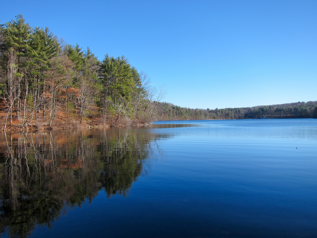 Walden Pond State Reservation Ice Fort C by MiguelVieira, on Flickr