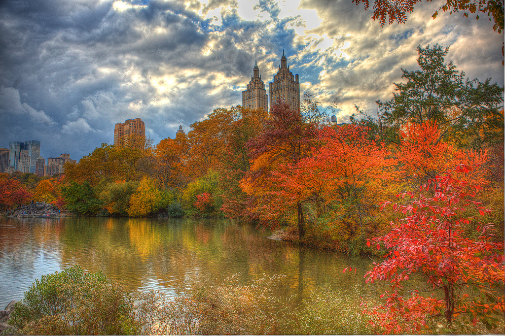 Fall Foliage in Central Park, New York C by Anthony Quintano, on Flickr