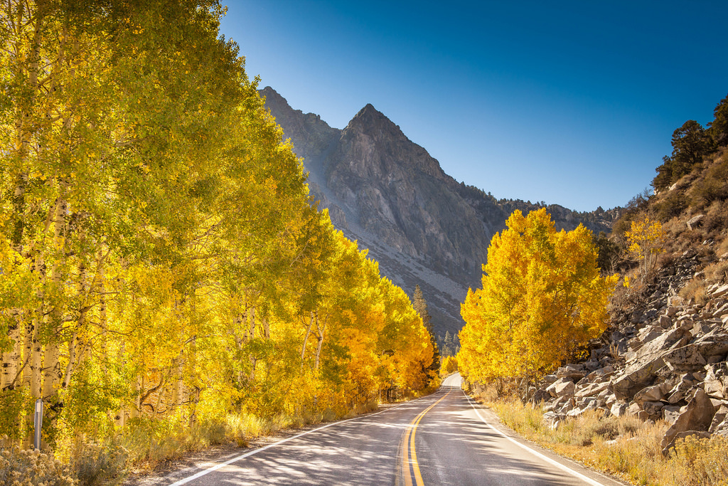 Fall Foliage Road by Anthony Quintano, on Flickr