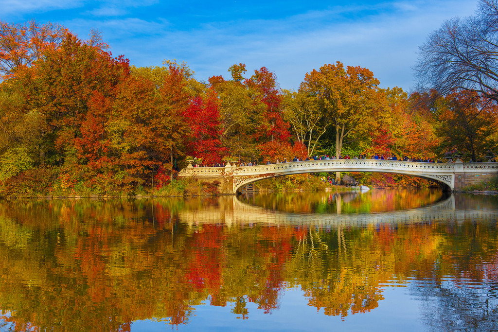 Fall Foliage Central Park New York City by Anthony Quintano, on Flickr