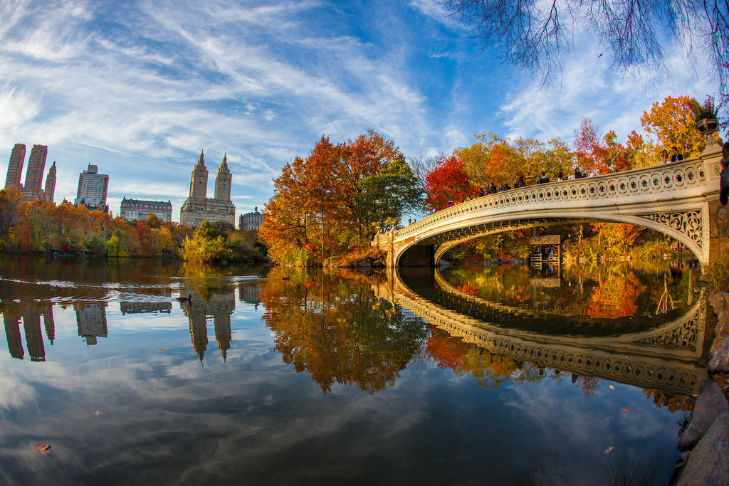 Fall Foliage in Central Park New York Ci by Anthony Quintano, on Flickr
