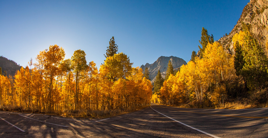 Silver Lake Fall Foliage 2014 California by Anthony Quintano, on Flickr
