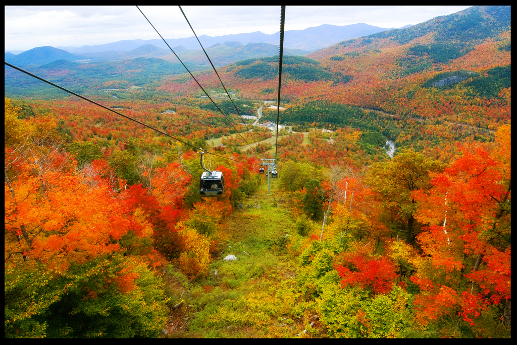 anthonys fall foliage 2 by Anthony Quintano, on Flickr