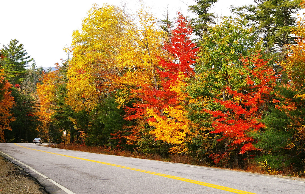 New Hampshire traffic light by kla4067, on Flickr