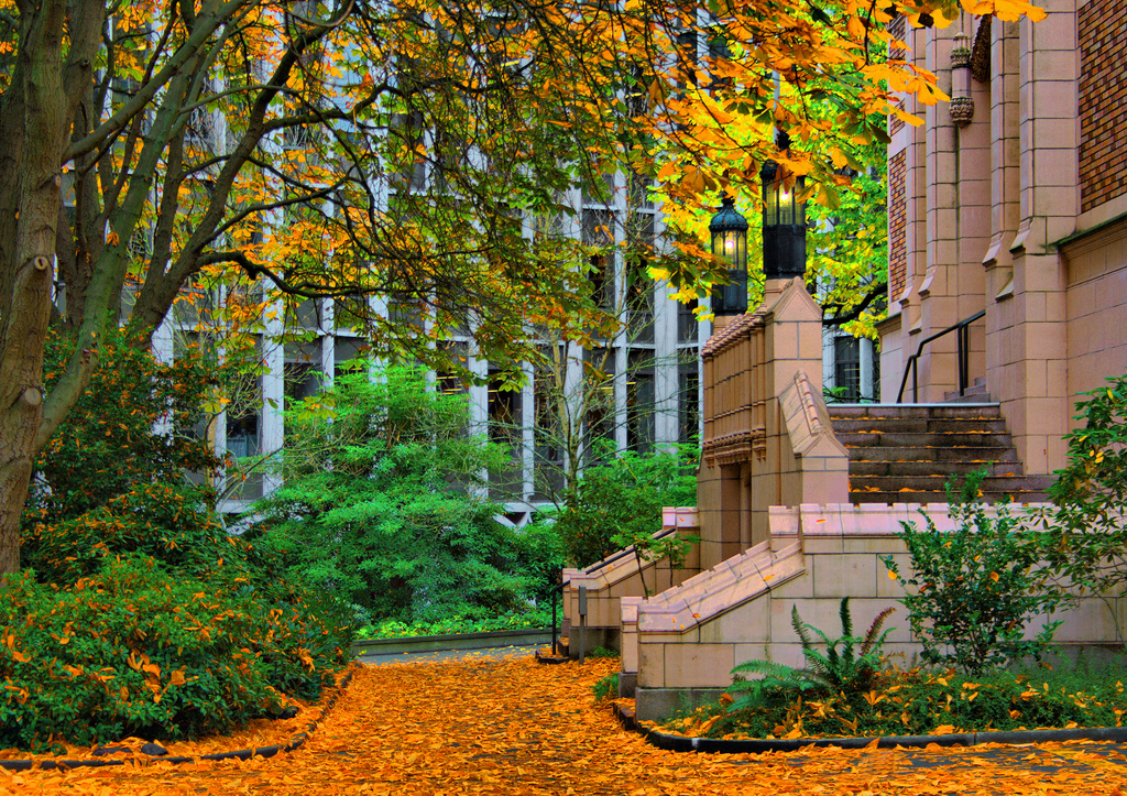University Of Washington Fall Foliage by ShebleyCL, on Flickr