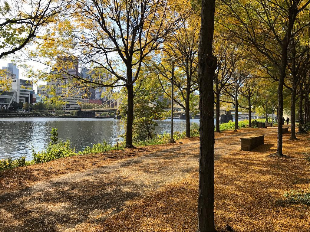 Through Riverfront Trail in fall foliage by daveynin, on Flickr