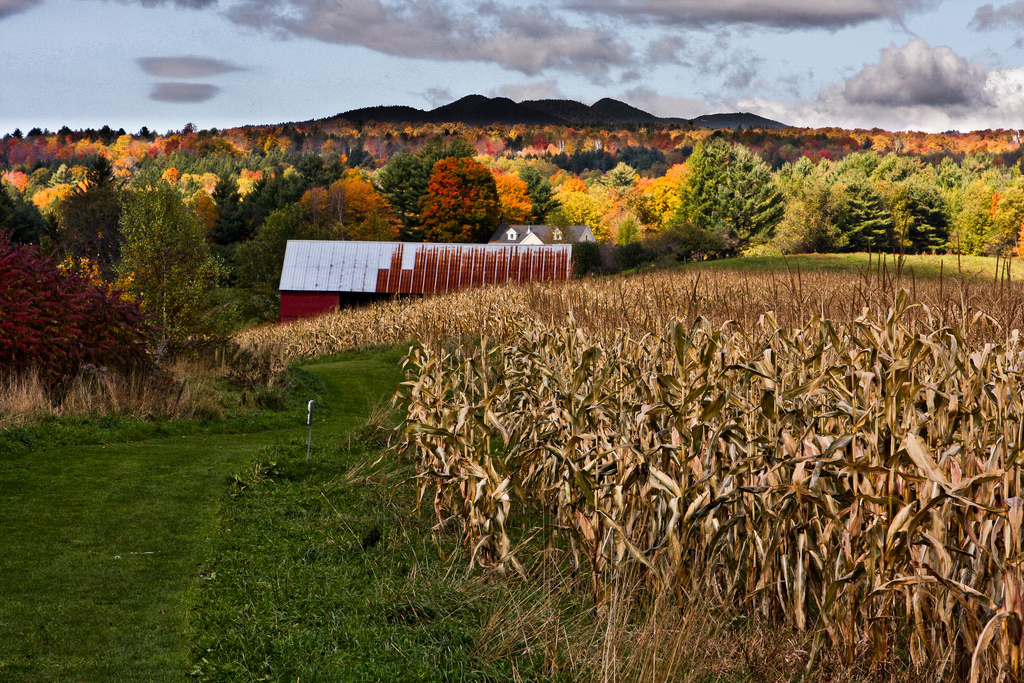 Fall Foliage in Stowe, VT by pdbreen, on Flickr