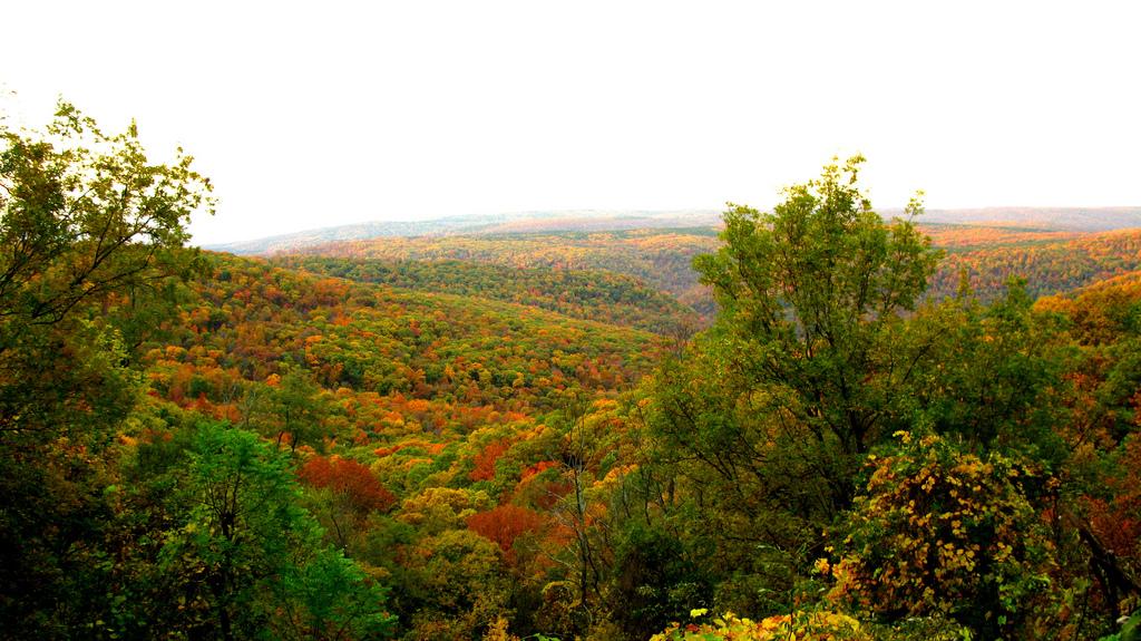 Autumn in the Ozarks by OakleyOriginals, on Flickr