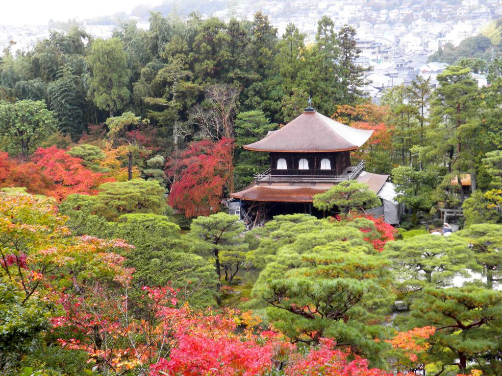Fall Foliage at Ginkaku-ji by np&djjewell, on Flickr