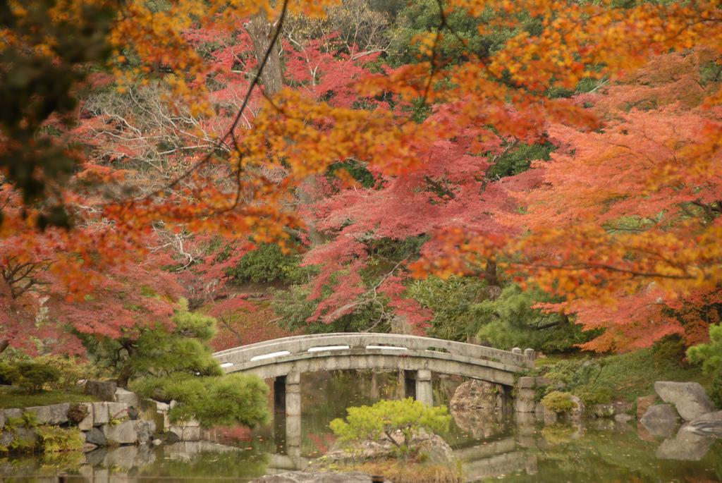 Sentō-gosho Garden, Kyoto by np&djjewell, on Flickr
