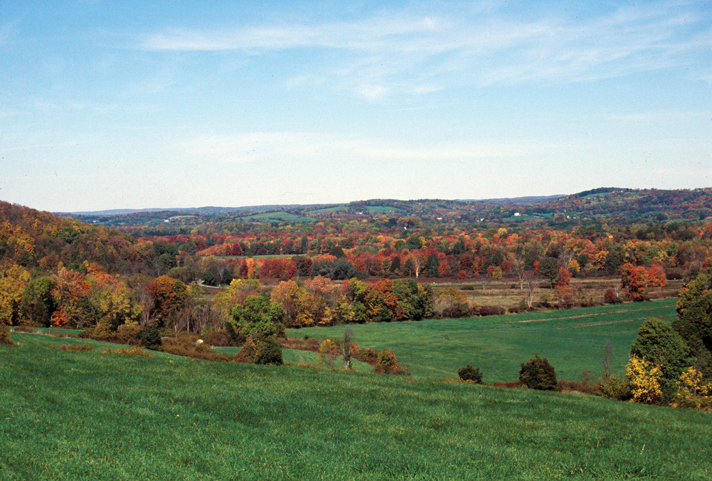 Photo of the Week - Hillside in fall at by U. S. Fish and Wildlife Service - Northeast Region, on Flickr