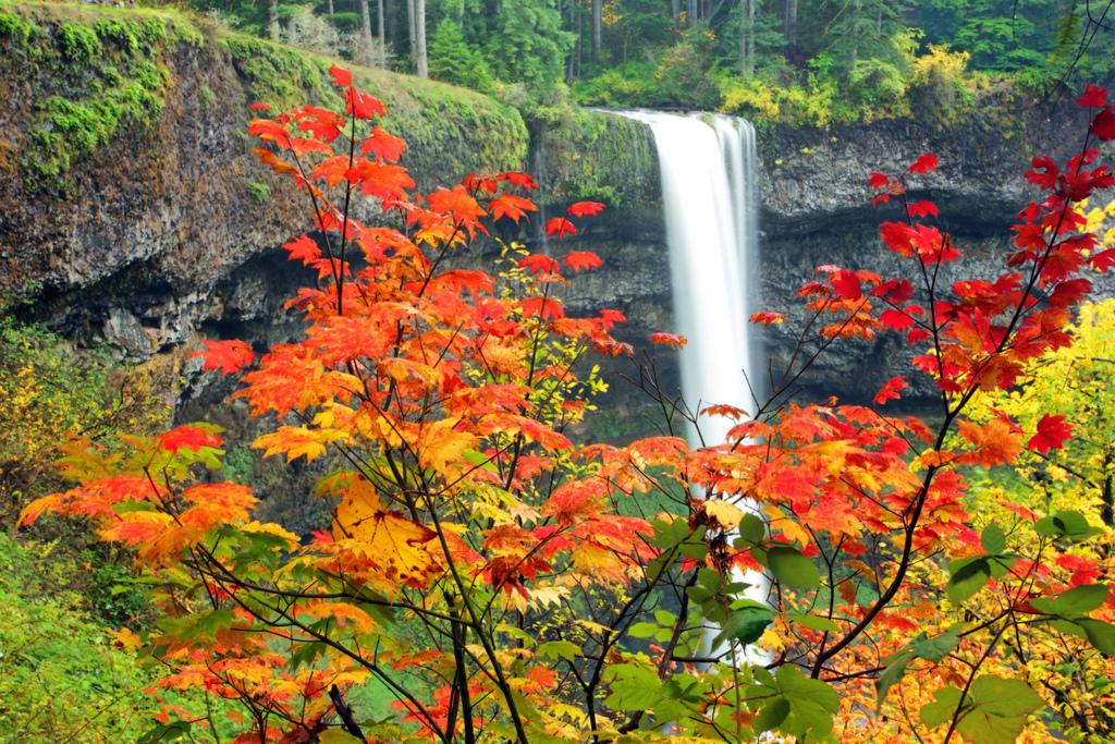 Seasons Change by Ian Sane, on Flickr