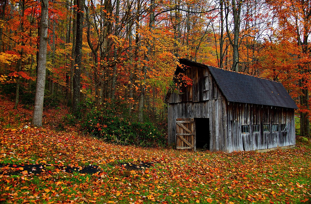 Autumn Country Barn by ForestWander.com, on Flickr