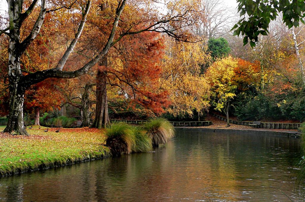 Hagley Park New Zealand. by Bernard Spragg, on Flickr