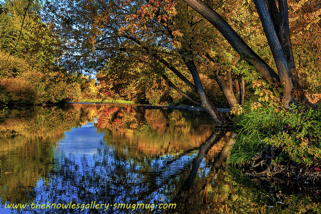 Boise River Fall Colors by The Knowles Gallery, on Flickr