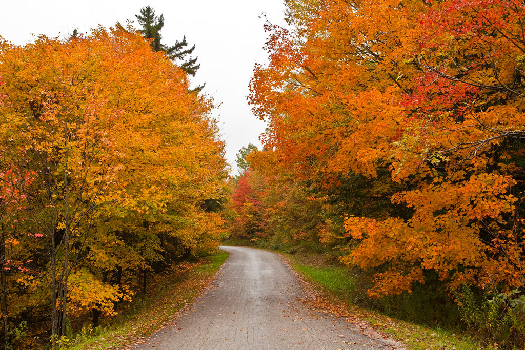 2012 Fall Foliage trip to Vermont by Anthony Quintano, on Flickr